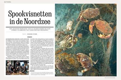 Cor Kuyvenhoven Onderwaterfotograaf